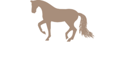 Equirene Coaching